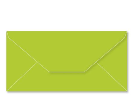Umschlag im Format DL (220 x 110 mm), apfelgruen