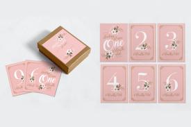 "Baby Meilensteinkarten ""Pink"""