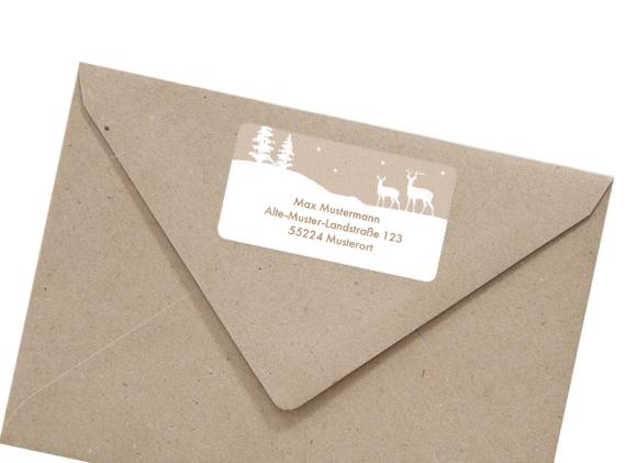 selbstklebendes Adressetikett für Absenderdaten , Motiv: Winterlandschaft AE, mit Briefhülle, Farbvariante: beige