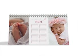 """Choose your Pics Fotokalender """"Papierflieger""""  altrosa"""