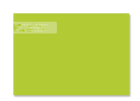 Adressaufkleber Ranken (Banderole) Apfelgrün