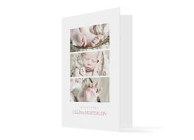 Geburtskarte Celina/Camilo altrosa