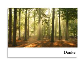 Trauer Danksagung Wald (Postkarte) Weiß