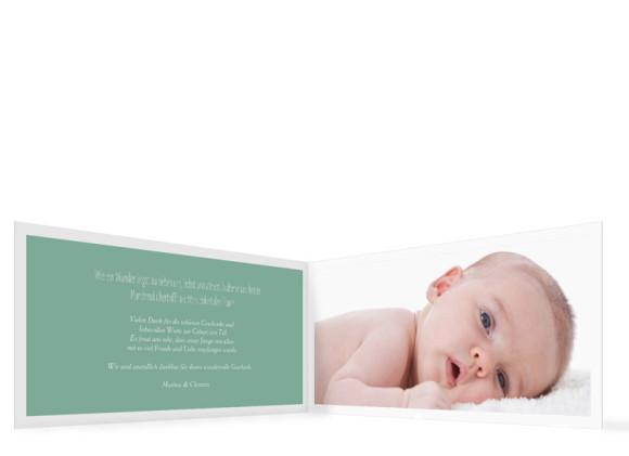 Babykarten Tilda/Till, Innenansicht der Farbversion Pistazie